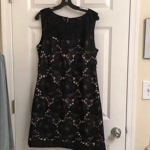 GORGEOUS White House Black Market dress sz 12